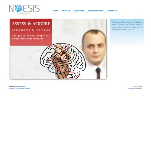 Noesis Consulting